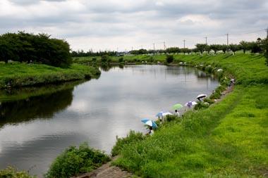 沼 自然 公園 びん 「びん沼自然公園」で釣りをしたいのですが気になっていることがあります。