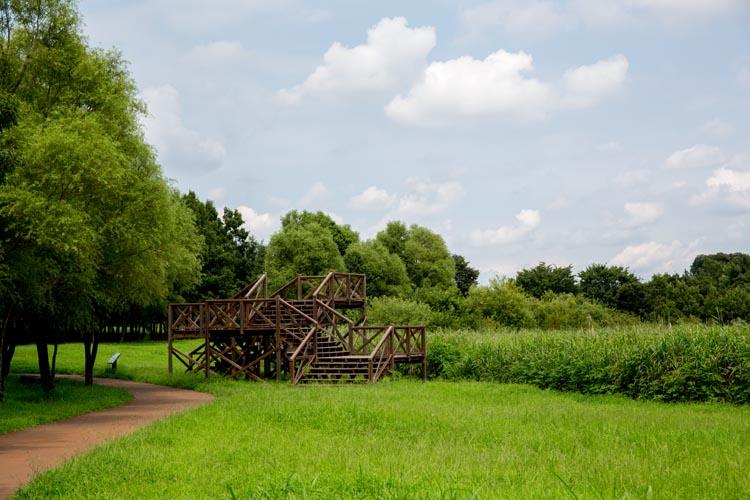 びん 沼 公園