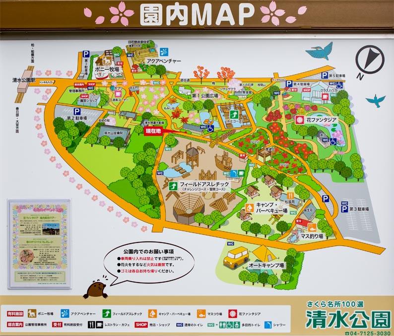 キャンプ 清水 場 公園
