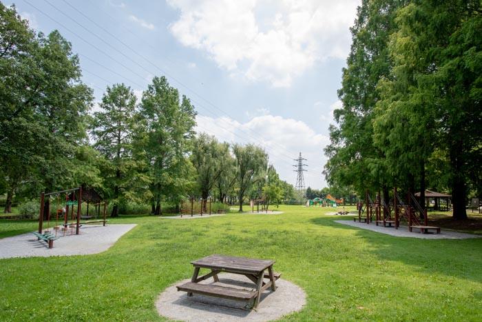三橋総合公園(さいたま市西区)トリム広場(フィールドアスレチック ...