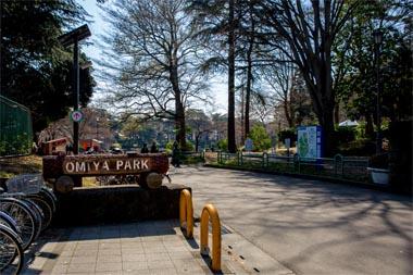 公園 大宮