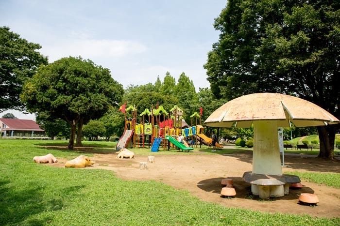 大崎公園(さいたま市緑区)/公園へ行こう!