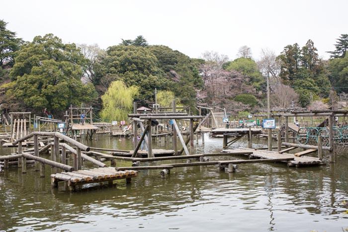 「清水公園フィールドアスレチック(千葉県野田市清水906)」の画像検索結果
