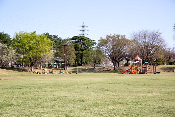 「埼玉県営和光樹林公園(埼玉県和光市広沢3番)」の画像検索結果